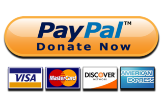 paypal logo and accepted credit card types